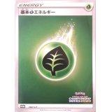 基本草エネルギー(チャンピオンズリーグ2020)【P】{060/S-P}