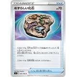 めずらしい化石【C】{091/100}