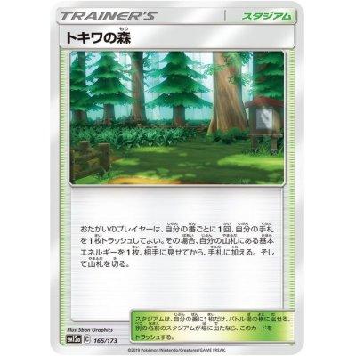 画像1: ☆SALE☆トキワの森【-】{165/173}