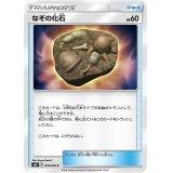 なぞの化石【C】{079/095}
